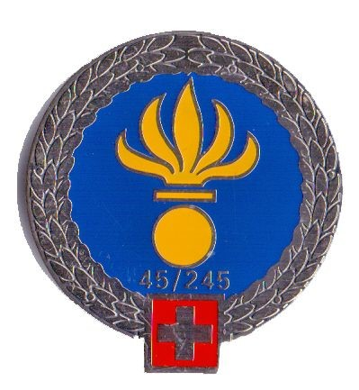 Picture of Flab RS 45/245 Béret Emblem