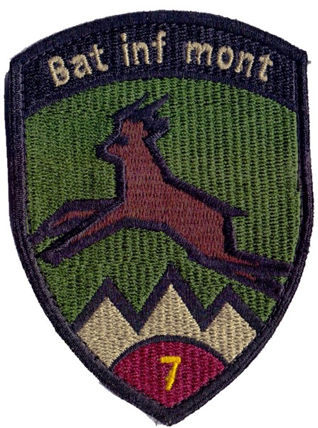 Photo de Bat Inf mont 7 violett mit Klett Infanteriebadge
