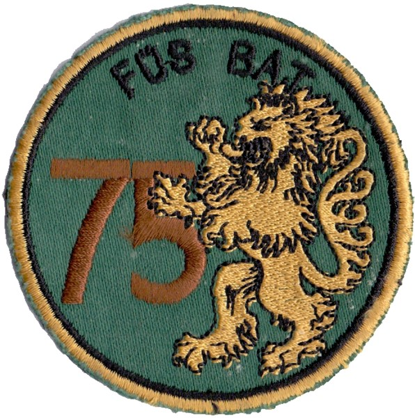 Photo de  Füs Bat 75 braun Löwe