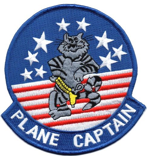 Picture of F14 Tomcat Plane Captain Abzeichen