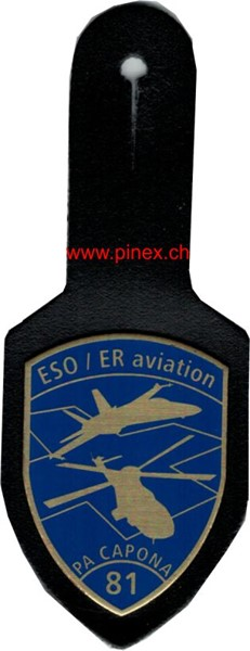 Photo de ESO / ER aviation PA CAPONA 81